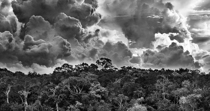 Archipel fluvial de Mariuá, Rio Negro, État d'Amazonas, Brésil, 2019 © Sebastiao Salgado